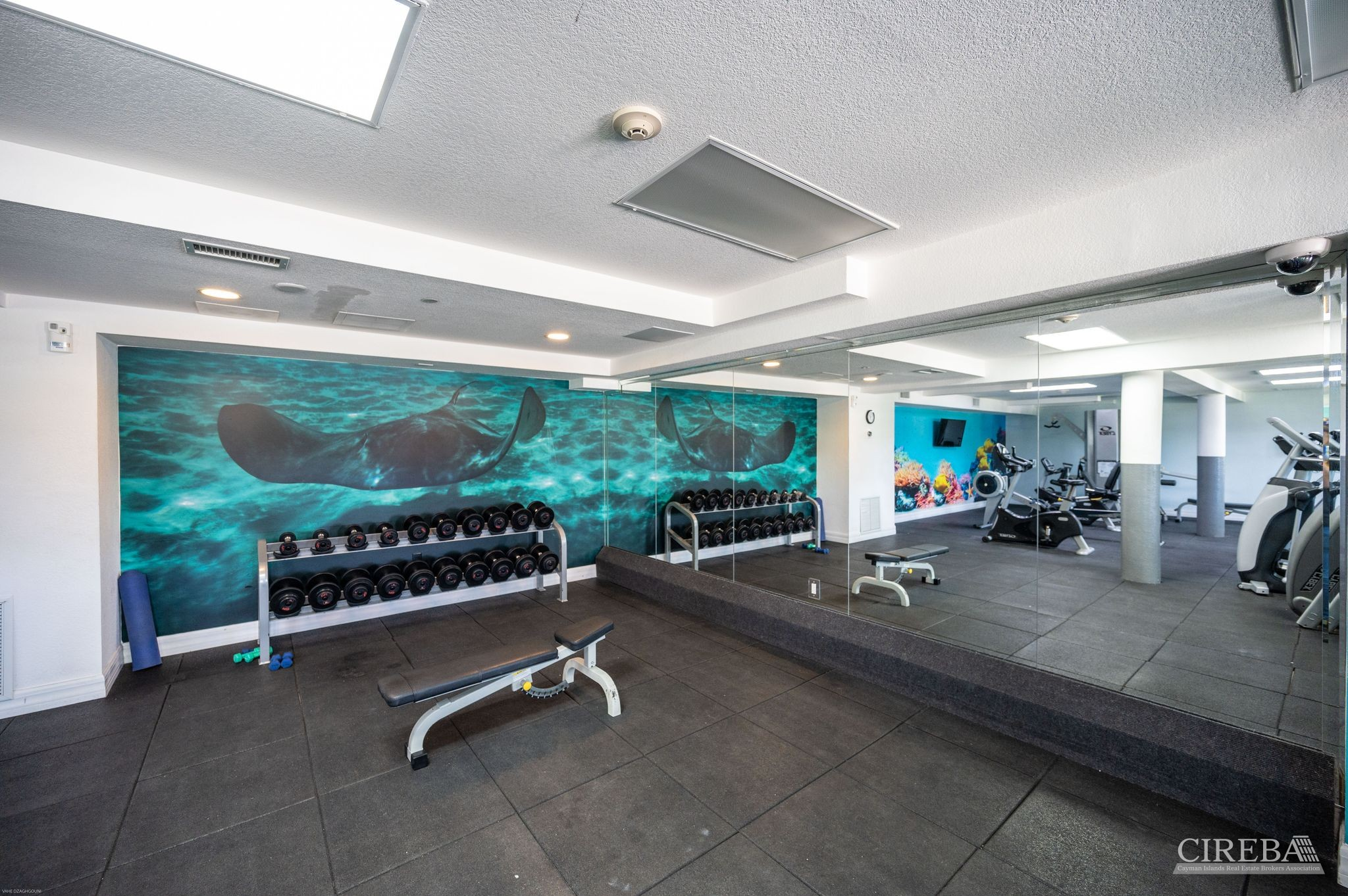 Fitness center equipped  with Sauna, free weights,  cardio  machines, and so much more. Located directly below the condo beside the spa.