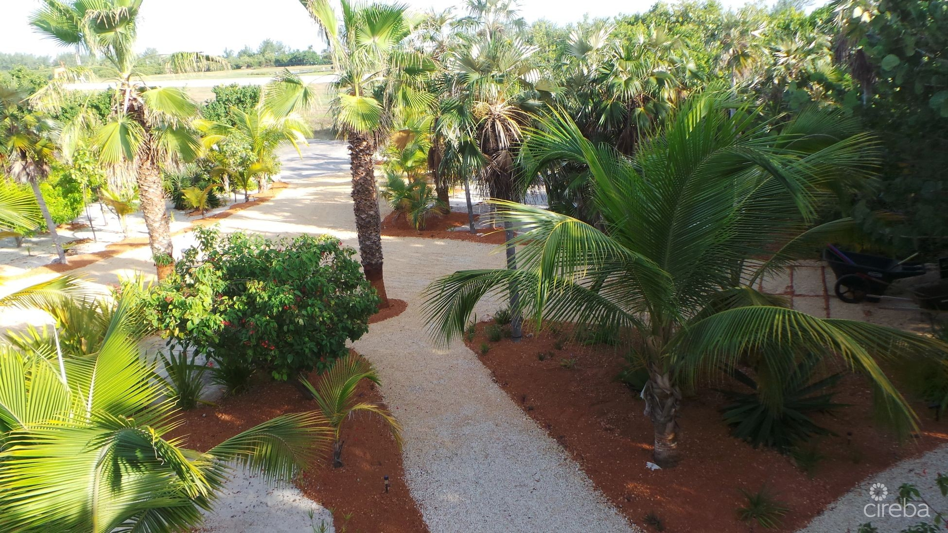 Pathways and drive way
