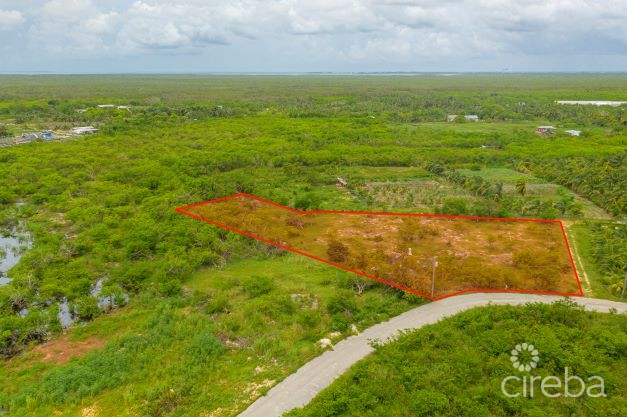 GOLDEN OPPORTUNITY 1.515 ACRE LOT LOOKOUT GARDENS
